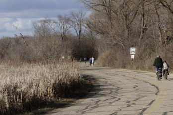 Pedestrians and cyclists on Arboretum Drive at Redwing Marsh