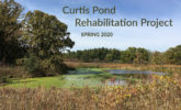 Curtis Pond photo with text