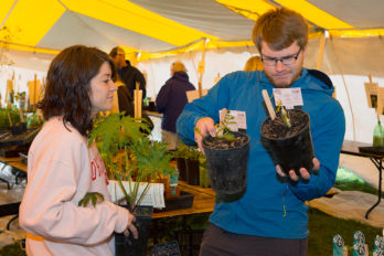May Native Plant Sale in the big tent