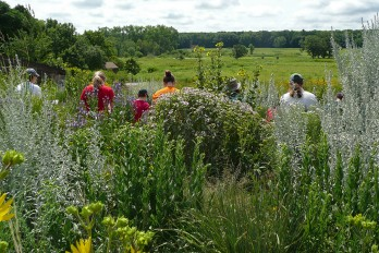 Institute participants draw a vista perspective of Curtis Prairie, the world's oldest restored prairie, for the activity
