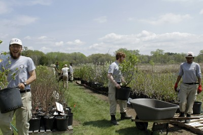 AmeriCorps NCCC Oak 7 team helping set up the popular Friends of the Arboretum Native Plant Sale in May.