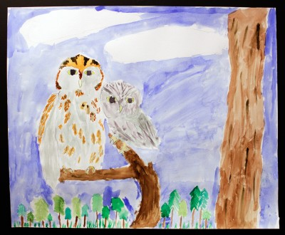 Eastern Screech Owl, by Isabelle.