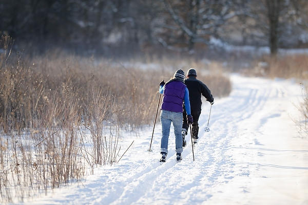 Skiers on service lane route through Curtis Prairie (Photo: Jeff Miller/UW–Madison