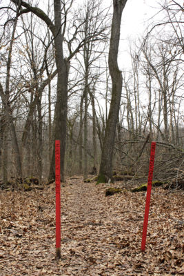 "Red stakes mark ""hike only"" trails (no skis or showshoes)."