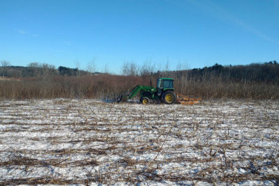 Land care staff mowing brush in Curtis Prairie, December 2016 (Photo: Christopher Kregel)