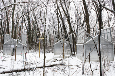 These greenhouses will help researchers study how climate change could affect the subnivium environment between the ground and snowpack.