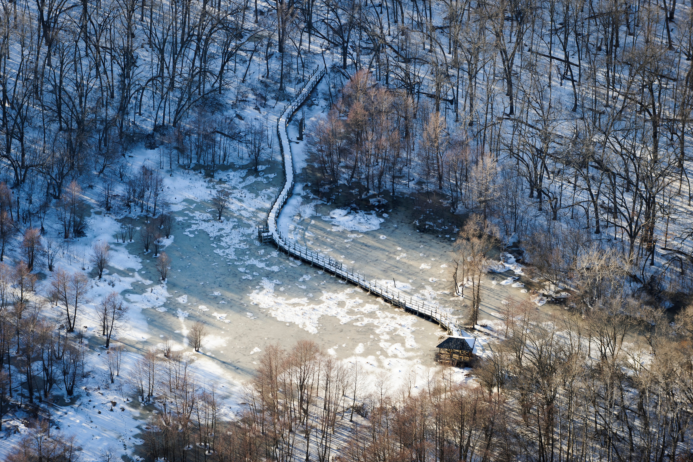 Icke Boardwalk winds from the woods through a wetland area north of Teal Pond as pictured in an aerial view of the snow-covered University of Wisconsin–Madison Arboretum during winter on March 13, 2013. The photograph was made from a small plane looking north. (Photo by Jeff Miller/UW–Madison)