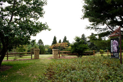 The new Pinetum entrance and split-rail fence in Longenecker Horticultural Gardens.