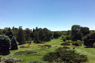 Longenecker Horticultural Gardens, view from the pinetum