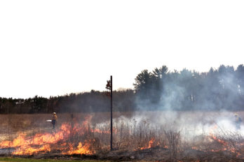 Prescribed fire in west Curtis Prairie, April 2017