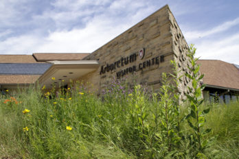 Arboretum Visitor Center in July with blooming native plants