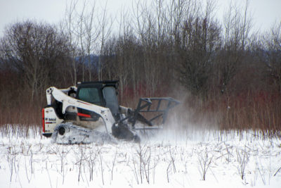 Forestry mowing at Faville Prairie