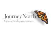JN_logo_monarch