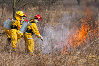 UW students putting out a spot fire during a class exercise in the prairie.