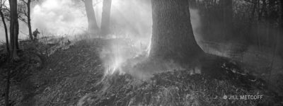 black and white panoramic photo of prescribed fire