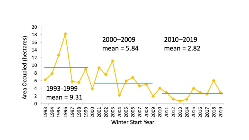 Graph depicting area monarchs occupy in the winter