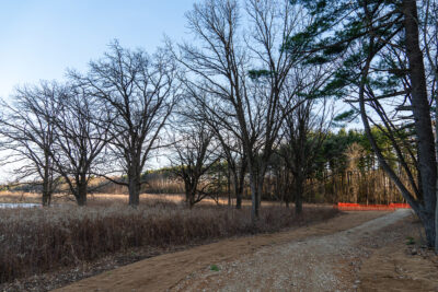 A new trail is open south of Curtis Pond