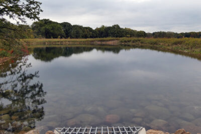 Curtis Pond after rehabilitation project
