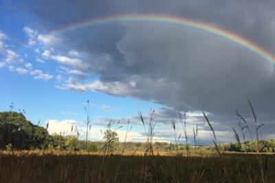 Rainbow over Curtis Prairie