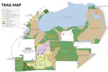 Detail of Arboretum trail map
