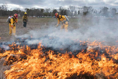 UW–Madison fire ecology class prescribed fire exercises