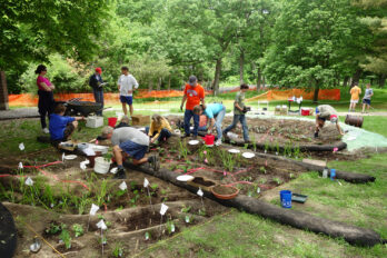 Scouts and volunteers planting a rain garden at Thoreau Elementary School
