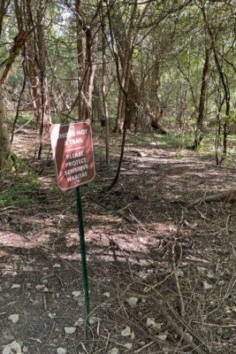 """""""This is not a trail"""" sign next to a rogue trail"""