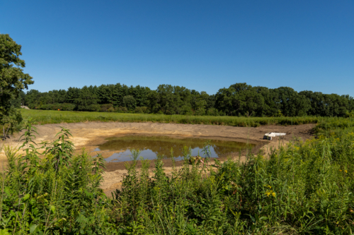 Curtis Pond, dredged and awaiting clay liner
